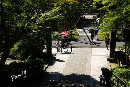 門前の風景・・長月の円覚寺にて・・8
