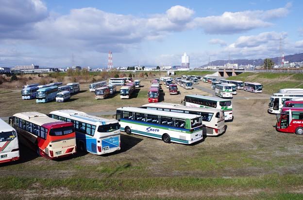 観光バスが50台ほど3