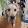 Photos: みずきトライアル中