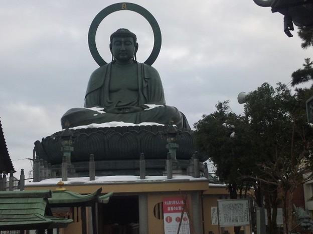 フォト蔵高岡大仏を初めて見に来た。日本三大仏の一つだよアルバム: モバツイ (372)写真データフォト蔵ツイート