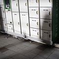 Photos: 110311 仙台駅前_P3110226