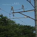 写真: 架線柱