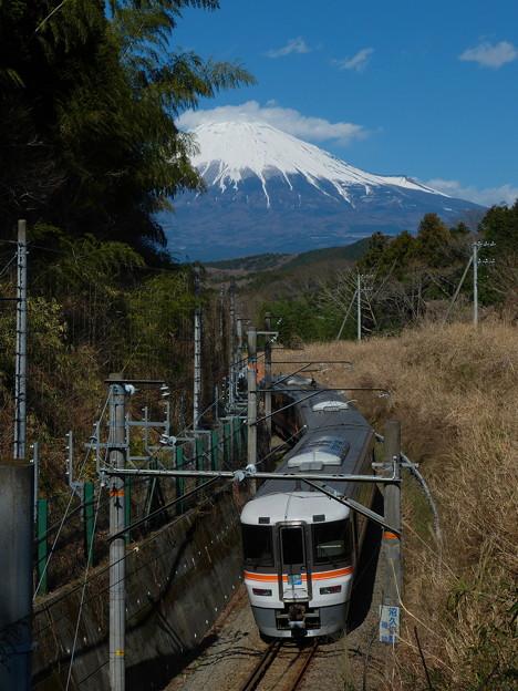 ワイドビューふじかわと富士山