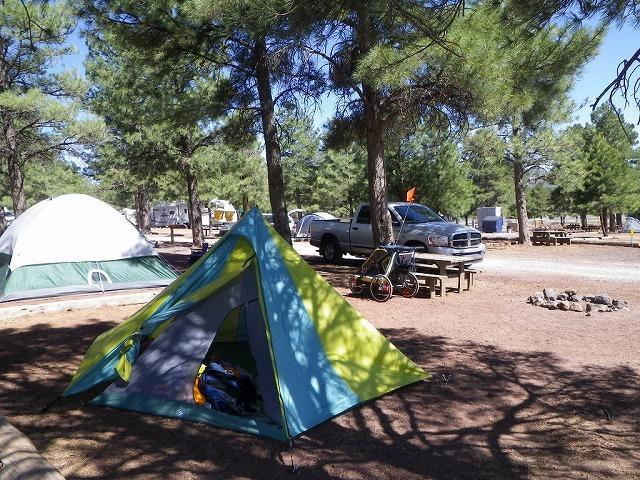 アリゾナ州の私営キャンプ場KOA…木陰があるとありがたい…。ただ砂漠ゆえに夜は砂嵐も…。