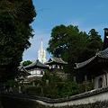 Photos: 寺院と教会の見える風景(1)