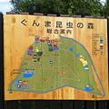 Photos: ぐんま昆虫の森なう