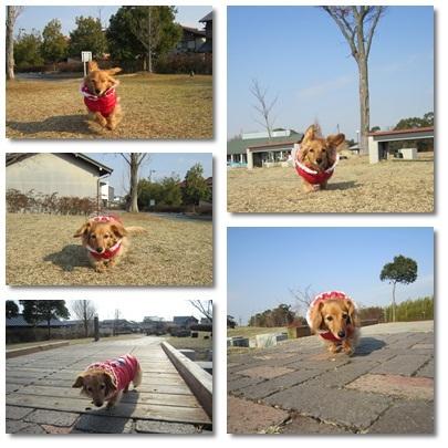 20111229 ウサ耳JURI