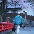 Photos: 桜巡礼`12'(身延、久遠寺、桜と人編)-4
