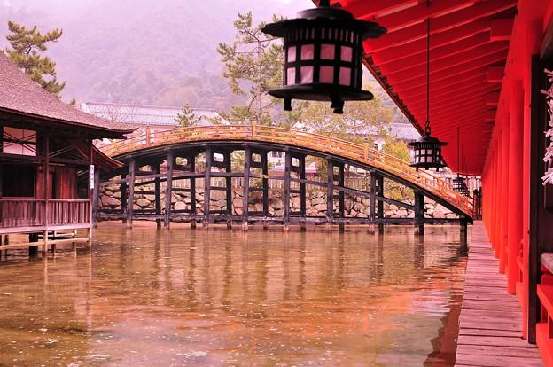 朝の雨降る満潮時の厳島神社内風景?・・橋