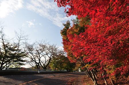琵琶湖ツーリング・1