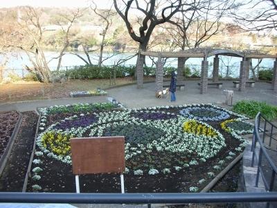津久井湖 花の苑地