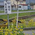 Photos: 3SA_4187