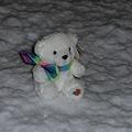 Photos: 雪に白くま!!